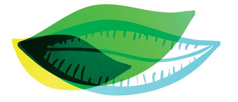 Rotorua Festival of Gardens graphic